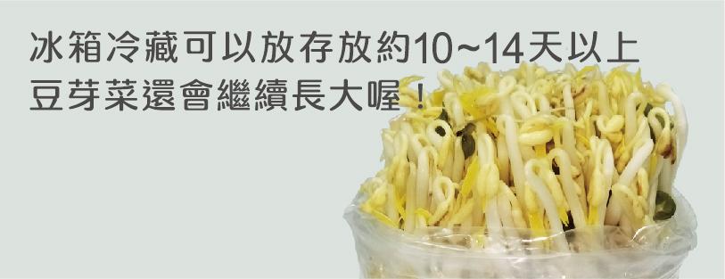 豆芽菜一頁式網站用圖-04