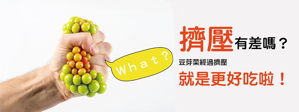 豆芽菜-EDM-擠壓專利耕作