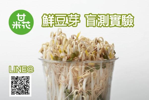 【生活日常】甘米花鮮豆芽盲測挑戰