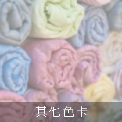 浴巾/方巾/毛巾被色卡
