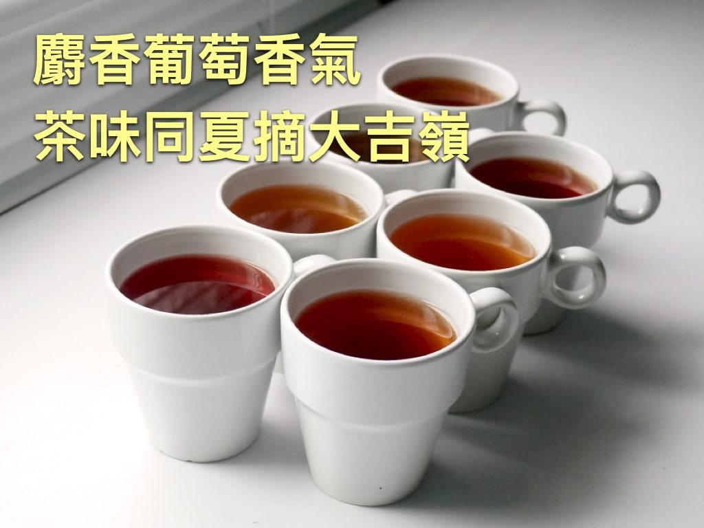 營業用茶介紹.003-min