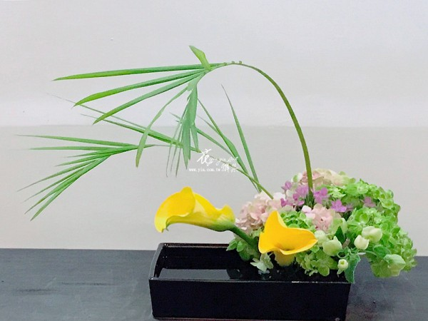 【池坊-自由花】